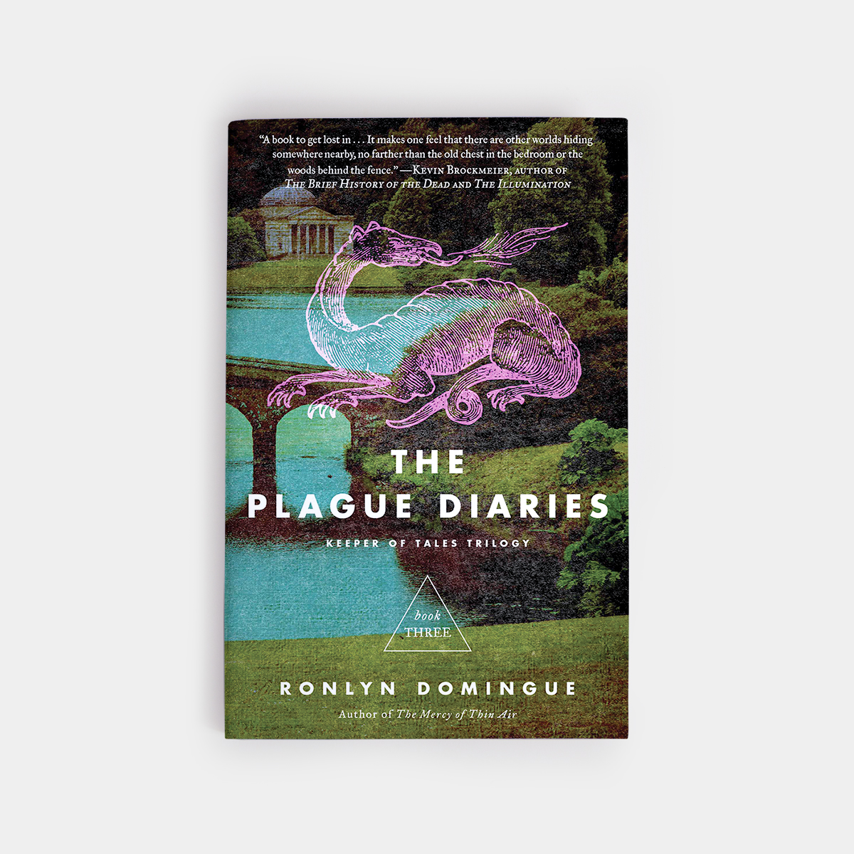 The Plague Diaries - annadorfman.com